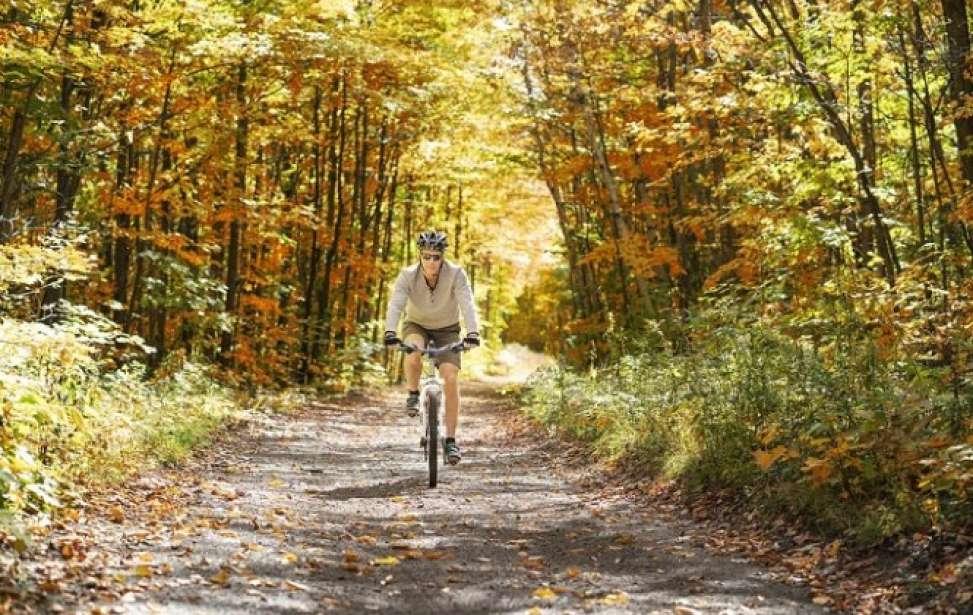 Bikers Rio Pardo | Dicas | Mountain bike para iniciantes: 9 dicas que todo mundo precisa conhecer