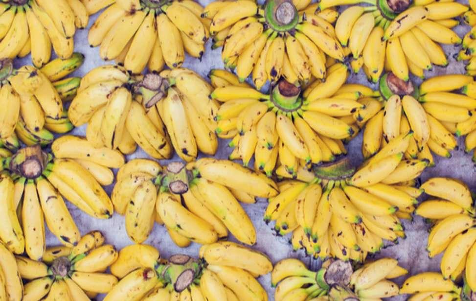 Bikers Rio Pardo | Dica | 5 receitas com banana para quem pratica esportes