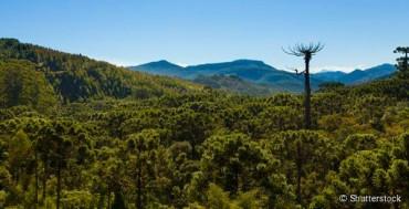 Bikers Riopardo | Turismo em Monte Verde: O que fazer no destino Mineiro